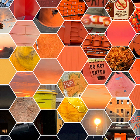 Hexagon Tiled Photography Layout