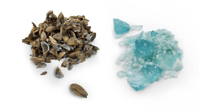 Biodesign; Glass; BDC; Zebra Glass