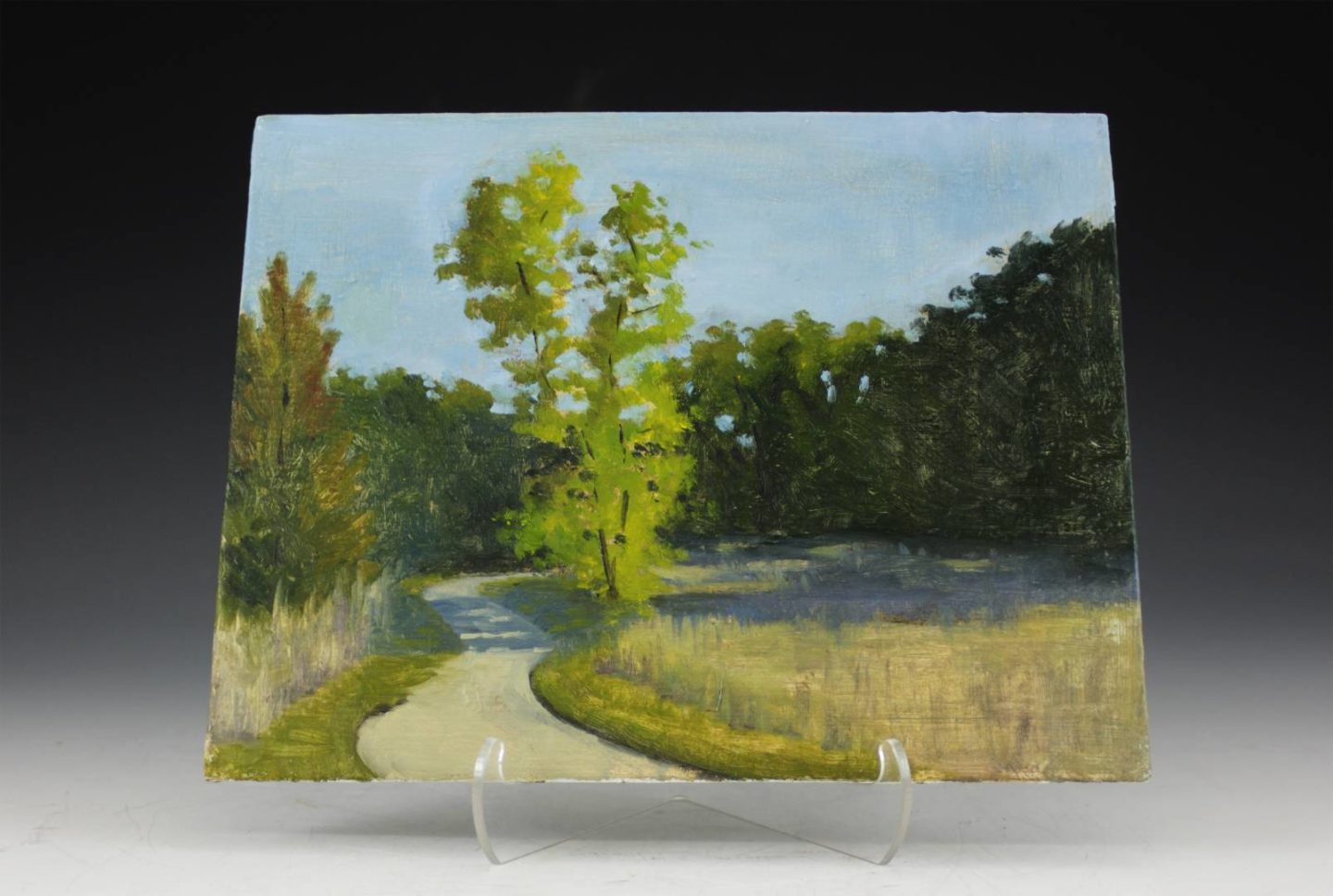 A scene showing the long shadows on a path on a long summer afternoon.