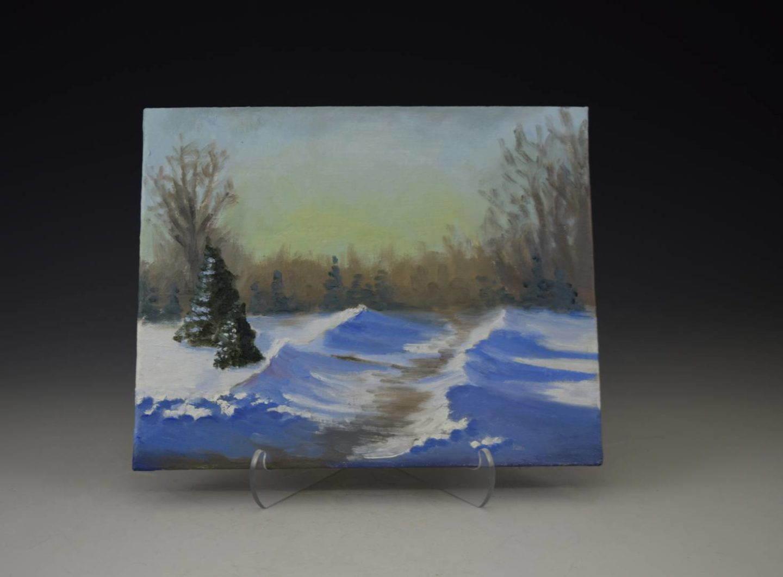 Beautiful snowy path among the pine trees.