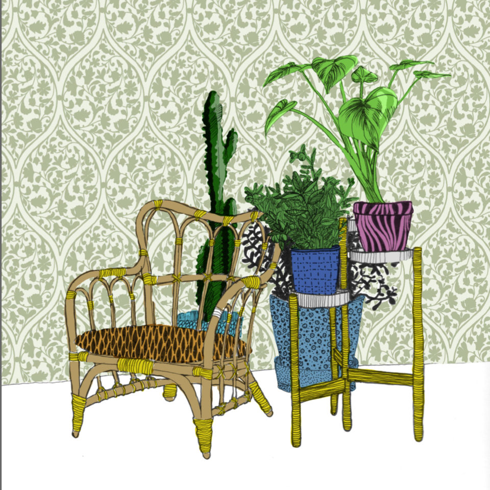 Chair in front of plants