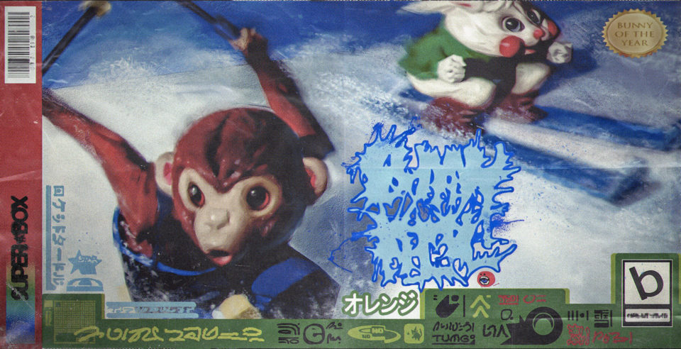 Bunny Hill cover art with monkey