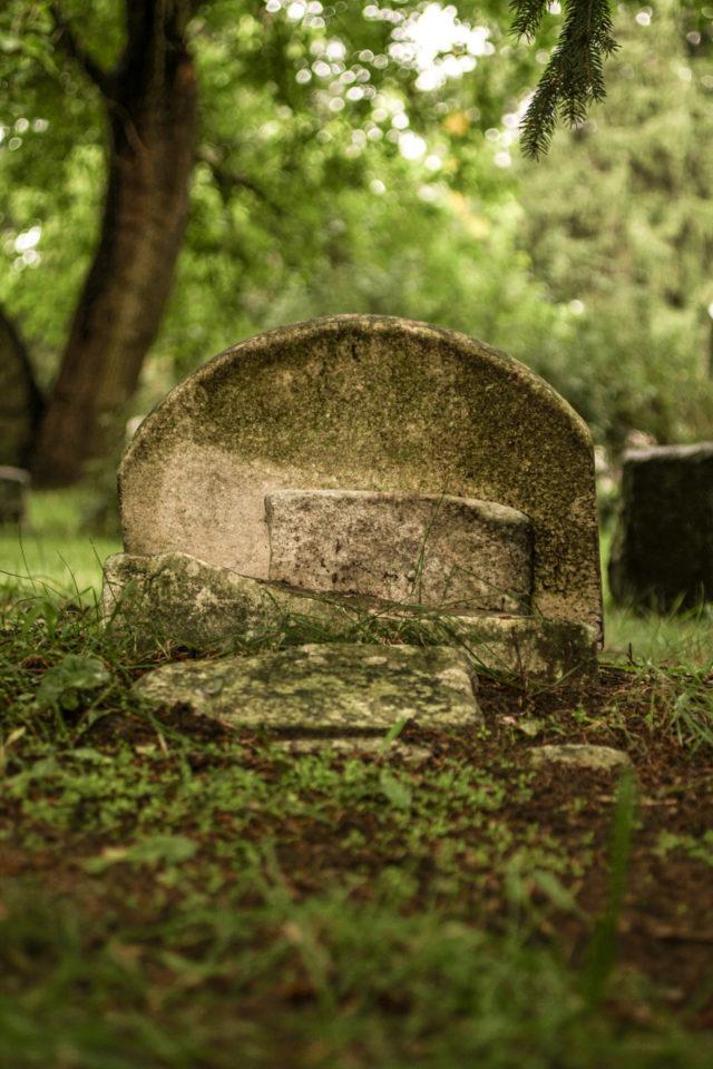 broken gravestone with greenery surrounding the background