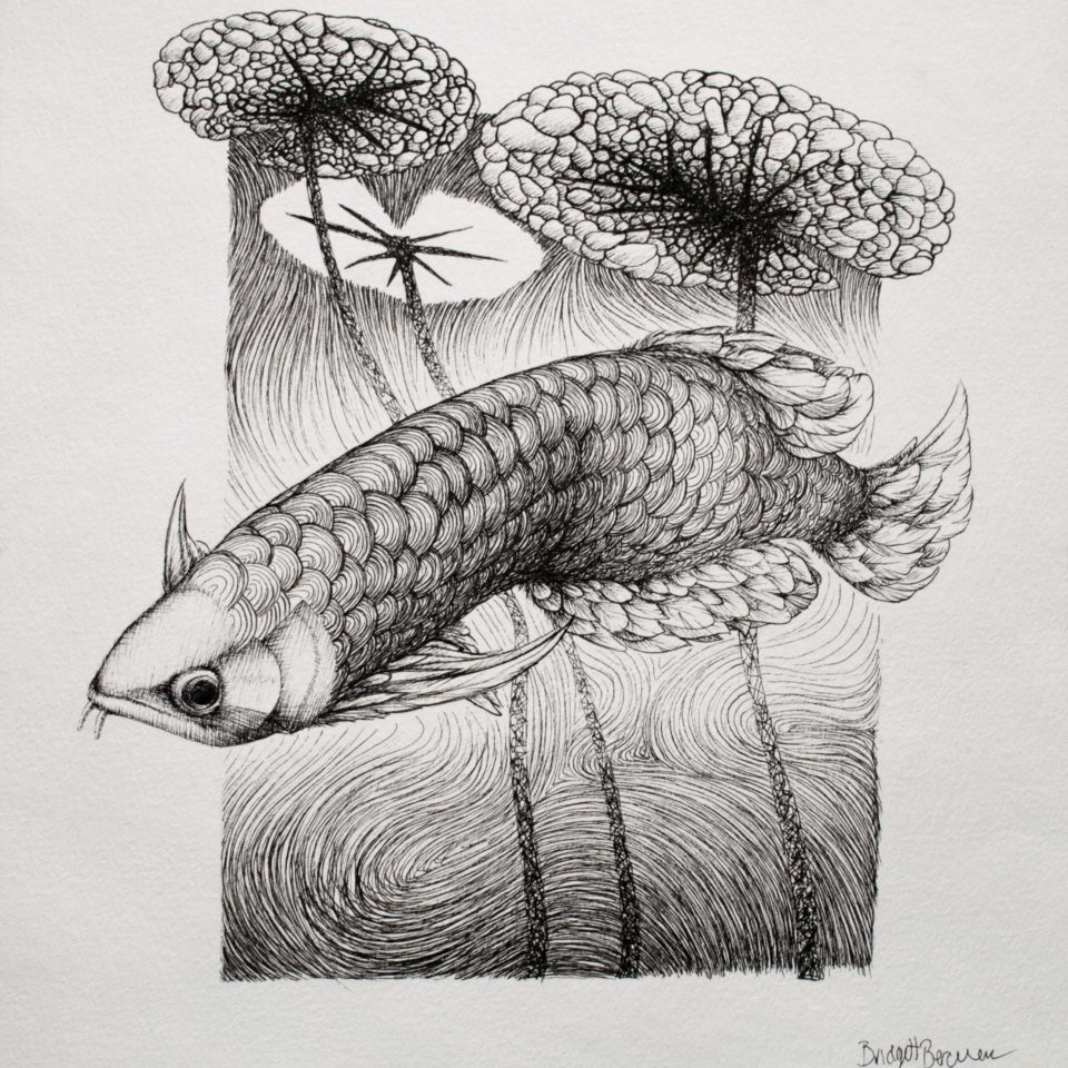 Ink and paper drawing of a fish. There is water lilies above said fish.