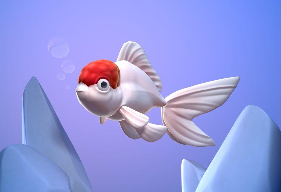 3D Model of an Oranda Goldfish.